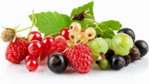 Уход за садовой ягодой: крыжовником, малиной, смородиной