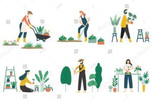 Садоводство в мае